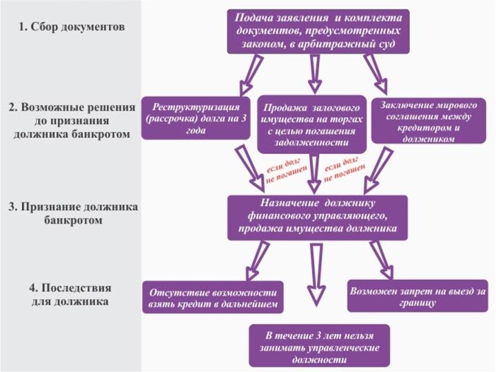 Основные этапы проведения процедуры банкротства