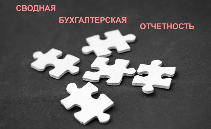 Сводная бухгалтерская отчетность предприятия