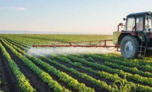 Развитие сельского хозяйства выгодно не только предпринимателю